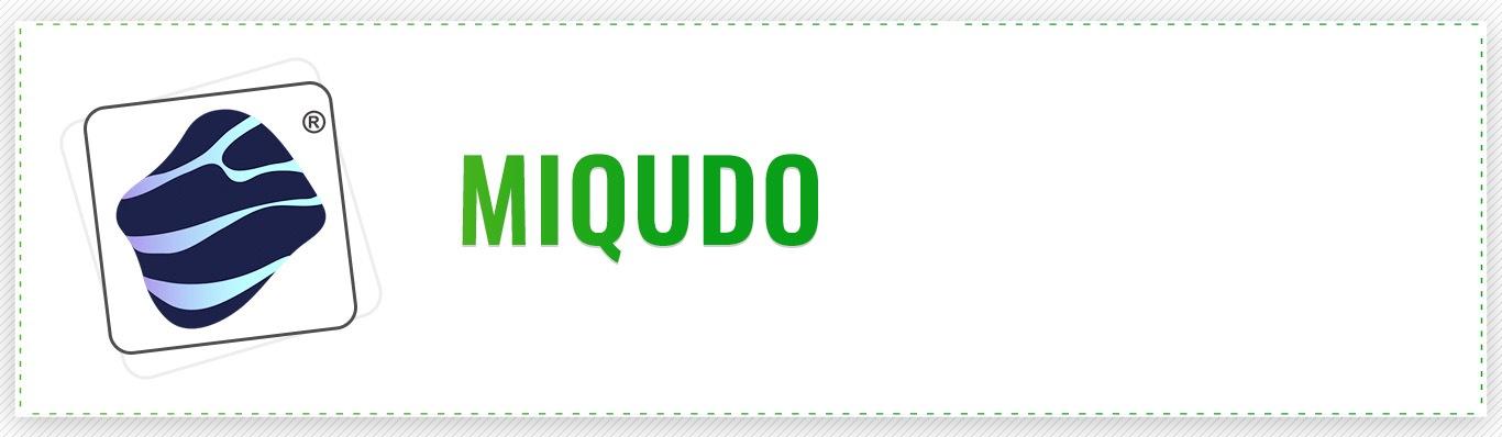 Miquido AI Development Company